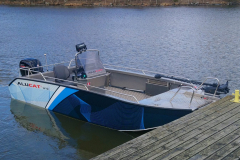 W10-CC-FISH5